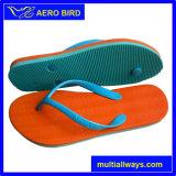 Latest Fashion Outdoor Slipper Sandal for Women