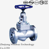 Stainless Steel Forged Flange End Globe Valve