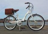 Lithium Power Bike (TDF1201Z)