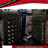 32 Cavity Compression Bottle Cap Mould