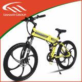 Fashion Model E-Bike with Lithium Battery Brushless Motor