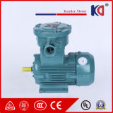 3pH AC Motor Explosion Proof Motor 45kw