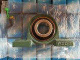 Machinery Parts of Inch Size High Quality Pillow Block Bearing UCP215-48
