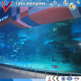 Clear Acrylic Material for Big Size Aquariums