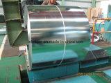 Galvanized Steel (Big Spangle)