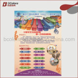 Printing Service, Cheap Promotion Flyer, Booklet, Brochure, Catalog Printing