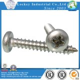 Stainless Steel Pan Head Sheet Metal Screw Passivated