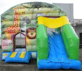 Bounce House, Inflatable Combo Castle (B3074)