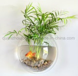Custom Wall Mounted Acrylic Fish Tank for Home Decoration