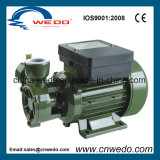 dB-550A Electric Clean Water Pump (0.55KW/0.75HP)