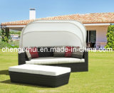 Garden Sofa /Sofa Bed/ Wicker / Patio / Garden Outdoor Rattan Sofa Set Furniture (DH-9619)
