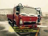 Sinotruk HOWO 4X2 8 Ton Light Duty Cargo Truck