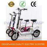 250W 300W 350W 500W Electric Scooter Export to South Korea