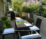 Model Patio Nice Garden Rattan Wicker Furniture