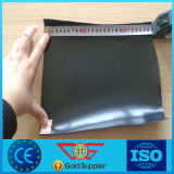 PVC Geomembrane with Reinforcement for Cement Kiln Dust Landfill