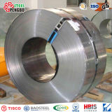 Prime Quality and Good Quantity Stainless Steel Strip