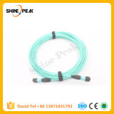 MPO MTP Connector Fiber Optical Patchcords Single-Mode or Muti-Mode