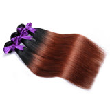 Wholesale Brazilian Virgin Hair 100% Human Hair Extensions Bundles Ombre 1b/33 18inch