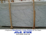 Bianco Carrara Marble Stone for Wall Panel