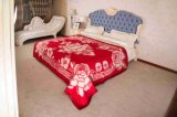 Woven Woolen Pure Wool Blanket (NMQ-WT013)