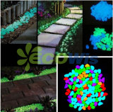 Glow in The Dark Pebbles for Walkways and Decor (HT5608)