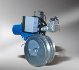 Practical Gas Burner of Compact Structure