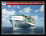 Shenzhen Sea Freight Shipping to Madagascar