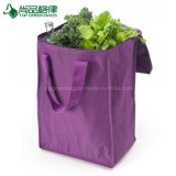 Customized Fashion Popular Picnic Lunch Tote Insulated Shopping Bag
