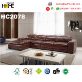 Modern Furniture Top Grain Leather Sofa Set (HC2078)