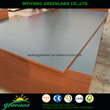 Long Using Life Shuttering Film Faced Plywood