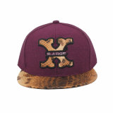 Leather Patch Embroidery, Popular Snapback Hat (GK15-L0008)