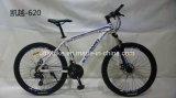 Low Price Alloy MTB Bike, Alloy Mountain Bicycle,
