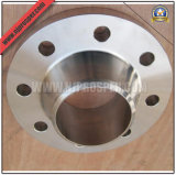 Stainless Steel Welding Neck Flanges (YZF-F160)