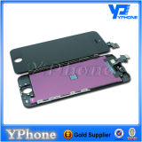 Glass Screen LCD for iPhone 5 Color Replacement