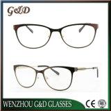 Popular Design Metal Eyewear Eyeglass Optical Frame 50-324