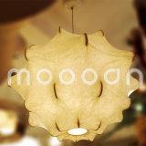 Handmade Decorative White Silk Skin Taraxacum Cocoon Suspension Light for Dining Room Bedroom