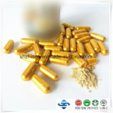 ODM/OEM Natural Plant Extract Loss Weight