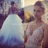 Sheer V-Neck Bridal Gowns Tulle Fashion Weddign Dresses Z5060