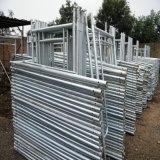 Od48mm X 3.5mm Galvanized Scaffold Steel Tube