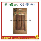 Nature Twig Wooden Color Pencil for Eco Stationery