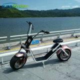 China Supplier 2017 The Most Popular Citycoco 1200W 18*9.5inch 2 Wheels Harley Electric Scooter