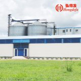 European Standard Low Price 200ton Corn Milling Machine (6FTZT)