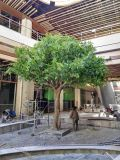 Hot Sale Decoration Artificial Indoor and Outdoor Banyan Tree