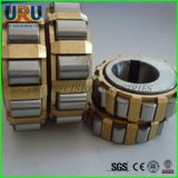 China Cylindrical Roller Eccentric Turning Arm Bearing Rn219em Rn220em Rn221em Rn222em Rn224em