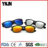 Promotional Ynjn Cat3 UV400 Polarized Sunglasses Colorful (YJ-SS15)