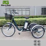 Three Wheel 250W Cargo Import China Electric Trike for Elder