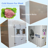 Good Refrigeration Cold Room for Meat Cold Storage Room