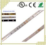 IP68 LED Strip Light with White Background