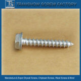 Ruspert Finished Ss304 Hex Flange Head Self Tapping Screws