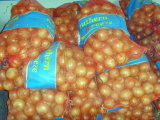 New Crop Fresh Yellow Onion (5 cm and up)